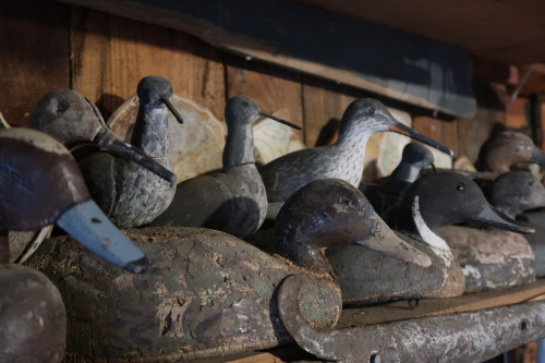 Waterfowl shaped decoys for lagoon hunting